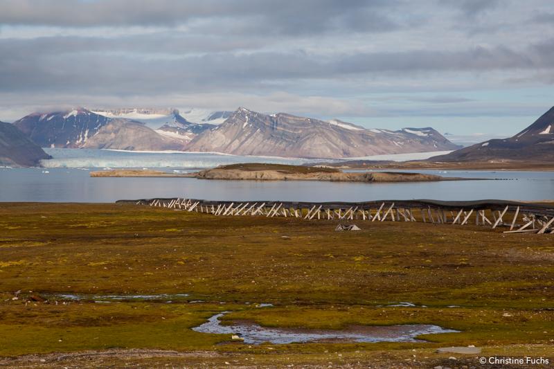 lumière du Svalbard