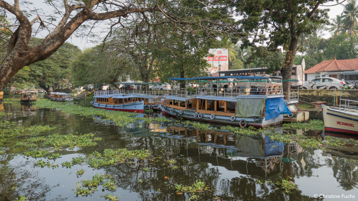 Le canal au centre d'Allepey, backwaters